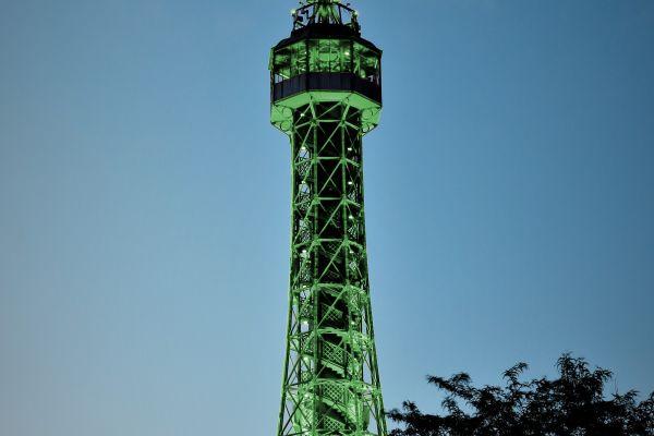 green9179BCA4-0C91-561D-EDE8-F16871A5B92F.jpg